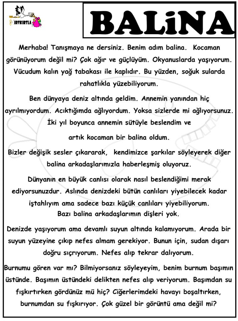 BALİNA HAKKINDA BİLGİ-OKUL ÖNCESİ