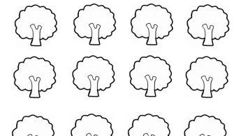 Sorumluluk Projesi Ağaçları