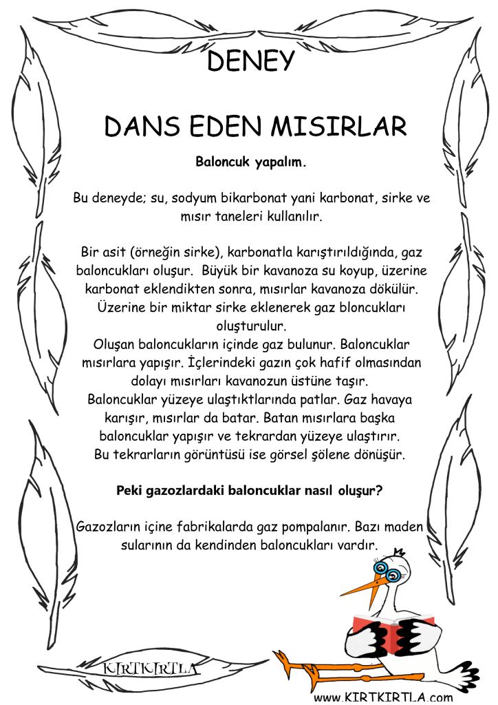DANS EDEN MISIRLAR BİLGİ SAYFASI - KIRTKIRTLA - OKUL ÖNCESİ