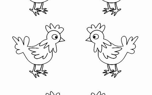 Ac Tavuklar Kalip Boyama Sayfasi Okul Oncesi Boyama Sayfasi