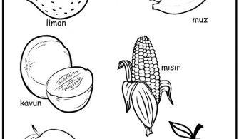 Okul öncesi Boyama Sayfası Kırtkırtla Yesil Renkli Sebze Ve Meyveler