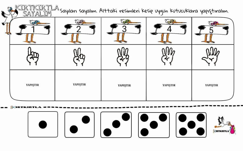 kırtkırtla sayılar  6 kırtkırtla - KIRTKIRTLA SAYILAR 1