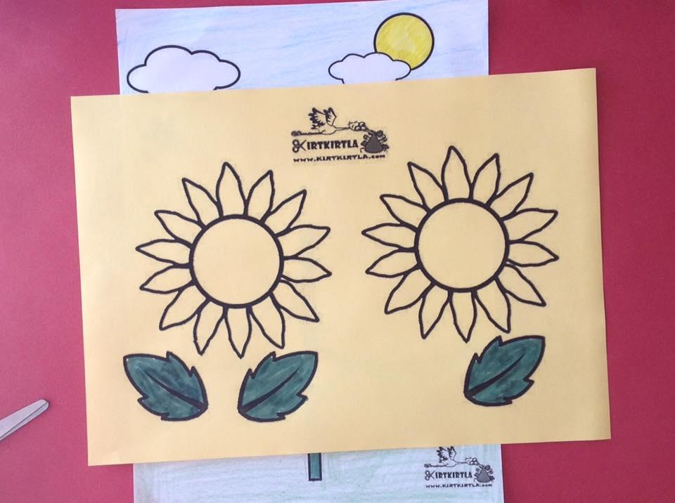 okul öncesi sanat etkinliği ayçiçeği makas çalışmaları kesme KIRTKIRTLA 12 - AYÇİÇEĞİ SANAT ETKİNLİĞİ