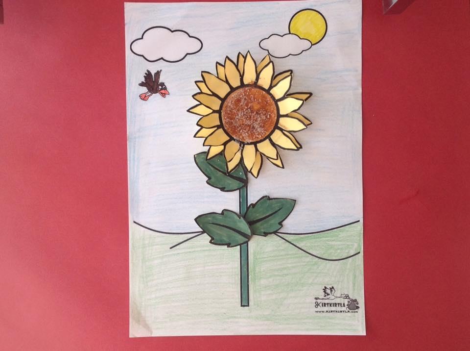 okul öncesi sanat etkinliği ayçiçeği makas çalışmaları kesme KIRTKIRTLA 19 - AYÇİÇEĞİ SANAT ETKİNLİĞİ