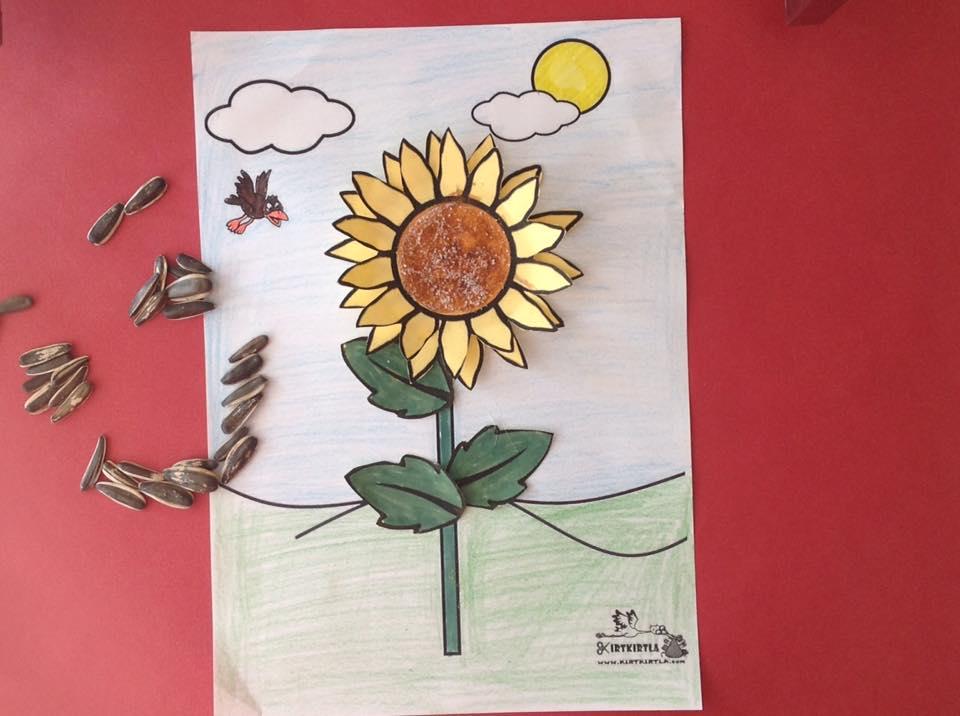Ayçiçeği Sanat Faaliyeti 2ayçiçeği Sanat Etkinliği Kirtkirtla