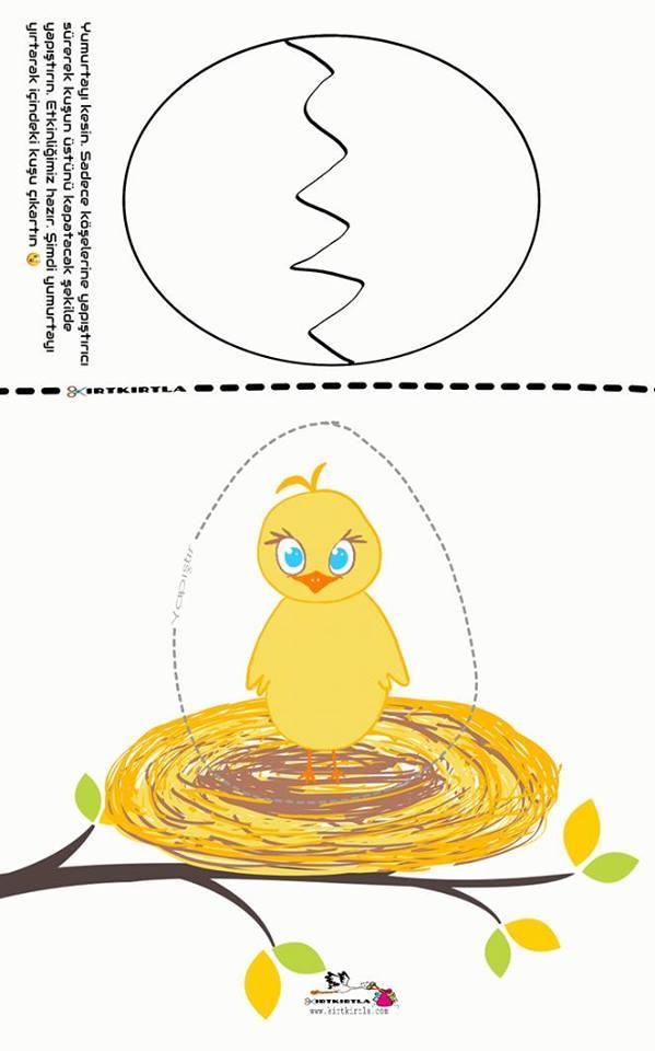 yumurtalar_okul öncesi _kırtkırtla