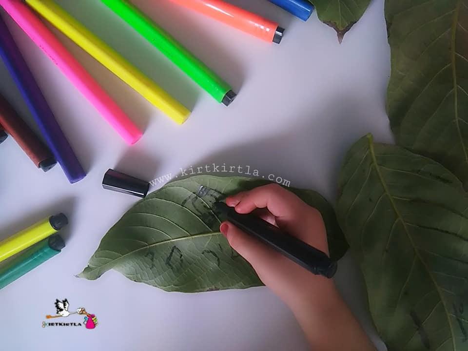 boyama çalışmaları ,yaprak boyama, okul öncesi