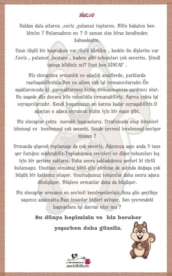 SİNCAP BİLGİ SAYFASI - SİNCAP