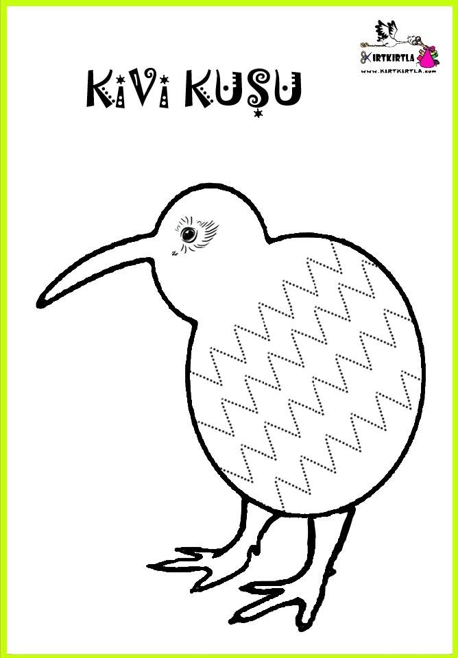 Kivi Kuşu Kirtkirtla Kivi Kuşu çizgi çalışması Ve Boyama Sayfası