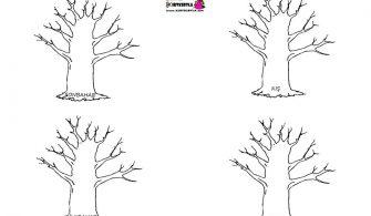 Mevsim Ağaçları