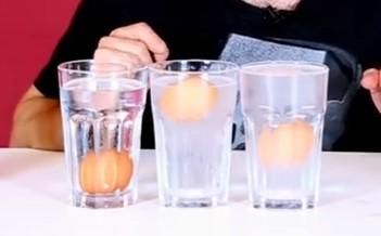 suda batmayan yumurta deneyi