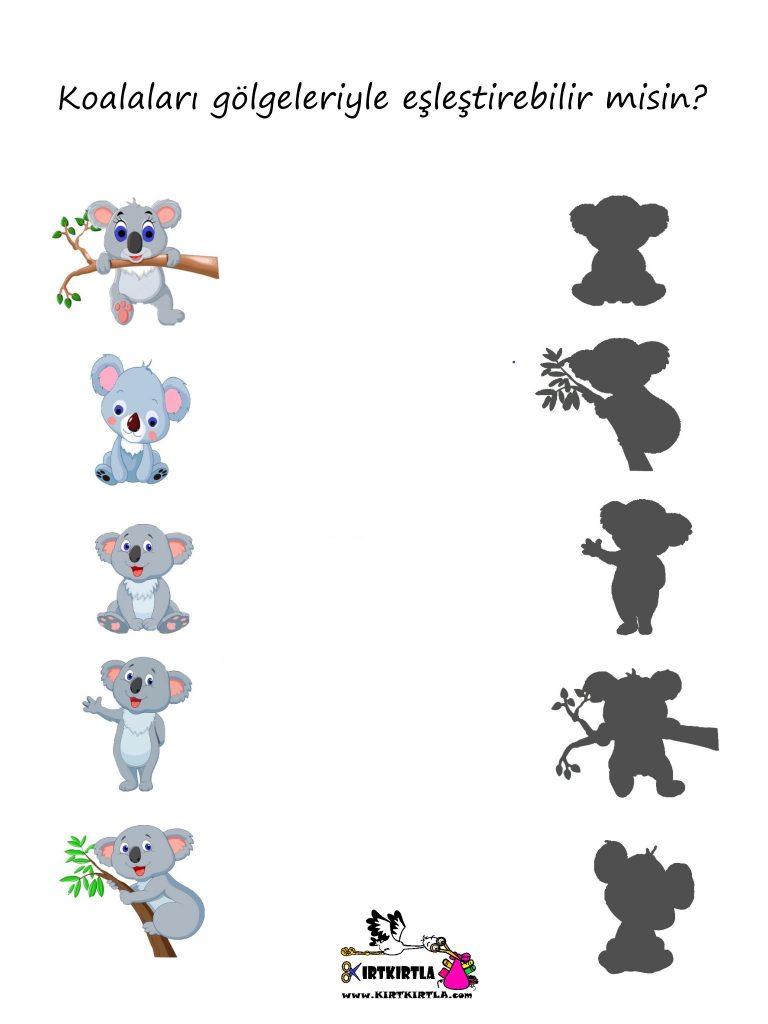 Koala gölgesini bul