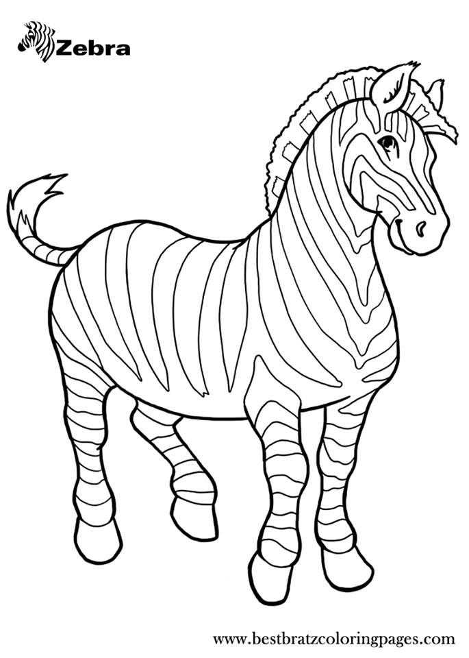 okul oncesi zebra boyama sayfasi 1 - ZEBRA BOYAMA SAYFALARI