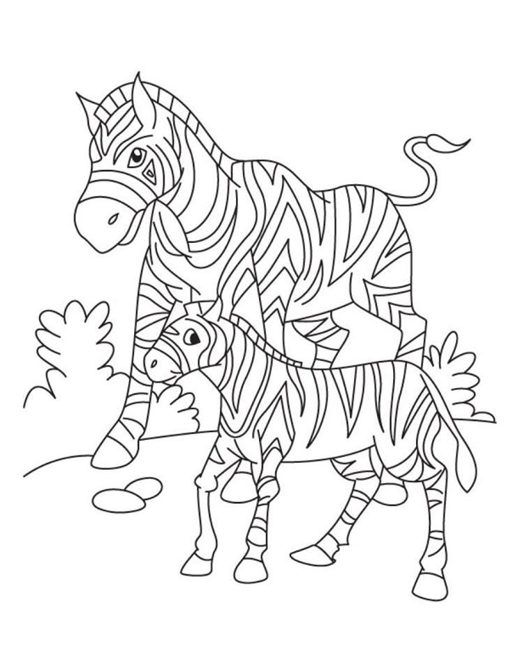 Zebra Boyama Sayfalari Kirtkirtla