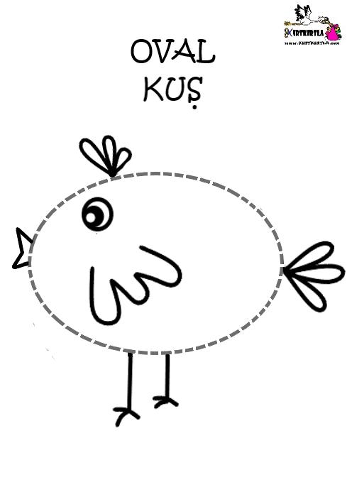 şekillerle Kuşlar Kirtkirtla