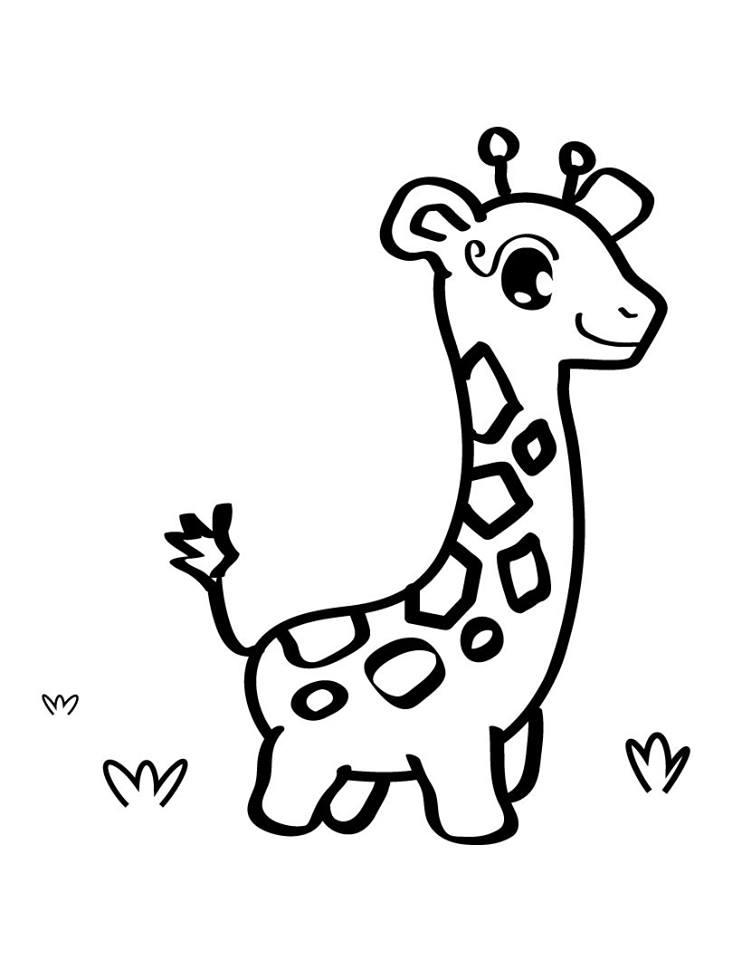 okul öncesi zürafa boyama sayfası 8 - ZÜRAFA BOYAMA SAYFASI-8
