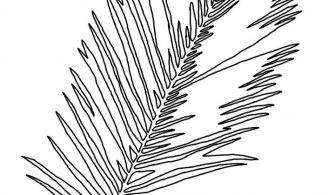 Yaprak – Boyama Sayfası