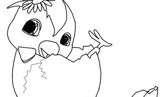 Yumurtadan Çıktım – Boyama Sayfası