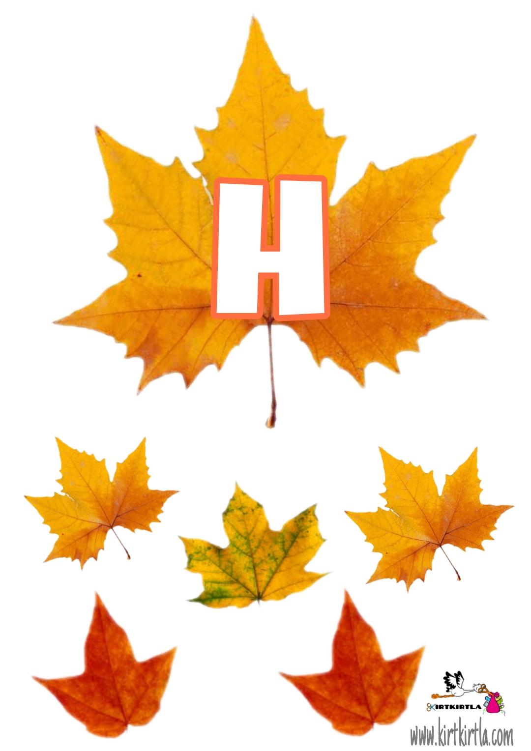 H harfi