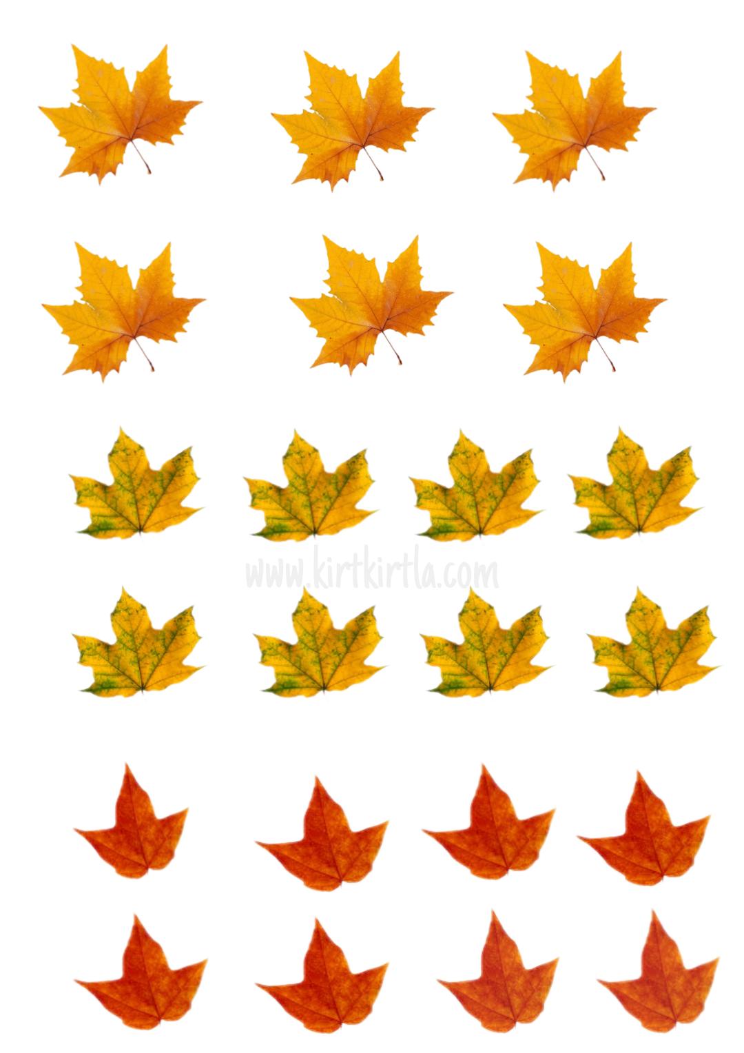 Sonbahar panosu harf kalıpları renkli