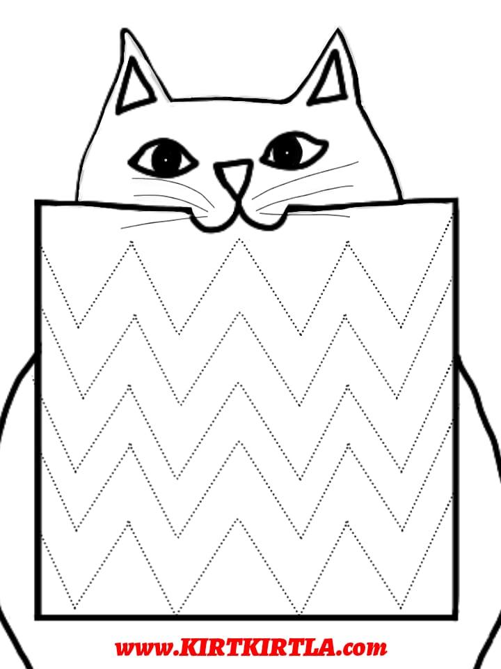 kedi çizgi çalışması