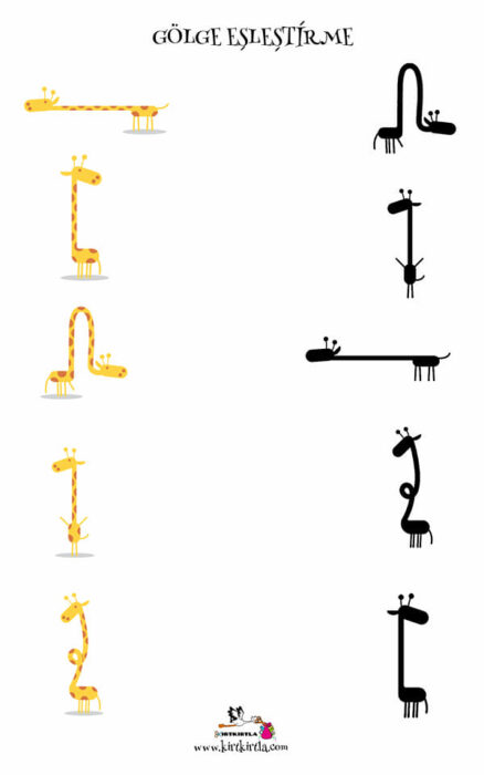 zürafa-gölge eşleştirme